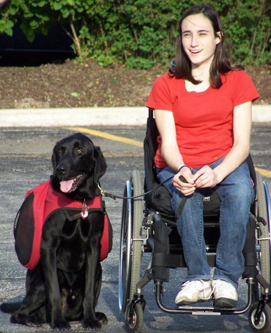 Hero Il Cane Guida Per Disabili Riceve La Laurea Accanto